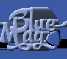 Boîte pour médiators Blue Turtle